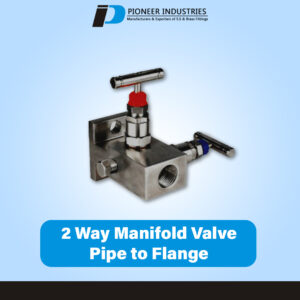 H Type 2 way Manifolds Valves pipe to flange